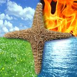 Star of 4 Elements square Stock Images
