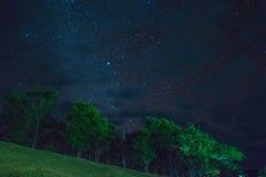 Star alla notte sopra l'albero, Doi Samer-Dao Immagini Stock Libere da Diritti