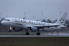 Star Alliance Lufthansa nivå som tar av från landningsbanan, närbildsikt royaltyfri bild