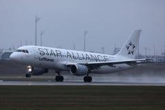 Star Alliance Lufthansa niv? som g?r taxien p? landningsbanan, n?rbildsikt royaltyfria foton