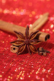 Star Anis , Cinnamon sticks and Gloves Stock Photos