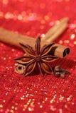 Star Anis , Cinnamon sticks and Gloves Stock Photos