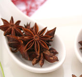 Star anis. Some dried star anis on a spoon Royalty Free Stock Photos