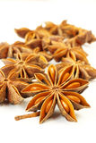 Star anise. Dried fruits of aromatic star anise Stock Images
