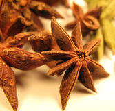 Star Anise. Food- Star Anise Macro photo Royalty Free Stock Photography