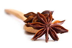 Star anise. Royalty Free Stock Photography