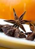 Star anise Stock Images
