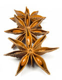 Star Anise. Three Star Anise on white background Stock Photography