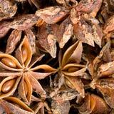 Star anise. Bulk dry food star anise Stock Images