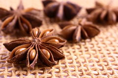 Star anise Stock Photos