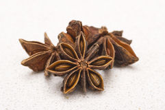 Star anise. Pods on a kitchen counter top Stock Photos