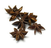 Star Anise. Isolated on white with clipping path Royalty Free Stock Images
