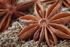 Star anise and anise seed Royalty Free Stock Photo