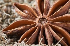 Star anise and anise seed Royalty Free Stock Photos