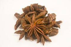 Star Anise or Aniseed Spice Royalty Free Stock Image