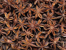 Star anise as an abstract background texture Royalty Free Stock Photos