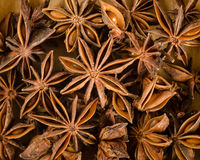 Star anise background Royalty Free Stock Photos