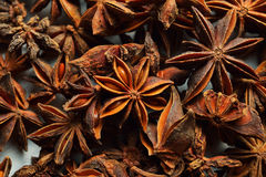 Star Anise Background Royalty Free Stock Photo