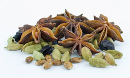 Star anise ,barberry , cardamom Royalty Free Stock Photo