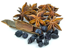 Star anise ,barberry ,cinnamon Stock Photo
