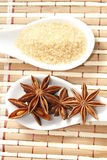 Star anise and cane sugar Royalty Free Stock Photography