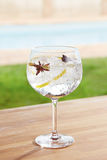 Star anise and cardamom gin and tonic cocktail by a pool outdoor Royalty Free Stock Photos