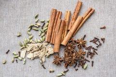 Star anise Cardamom nutmeg cinnamon ginger clove spice canvas stock images
