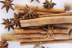 Star anise and cinamon Stock Image