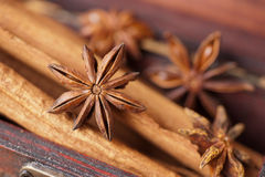 Star anise and cinnamon Stock Photo