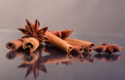 Star anise and cinnamon beer ingredients Stock Image