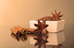 Star anise, cinnamon and flax Stock Photos