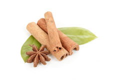 Star Anise, cinnamon and and green leave on white Royalty Free Stock Photos