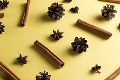 Star anise and cinnamon for herbal tea stock photo