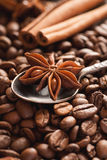 Star anise with cinnamon and roasted coffee beans Royalty Free Stock Image