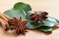 Star anise and cinnamon side view Royalty Free Stock Image