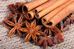 Star anise and cinnamon sticks Stock Image
