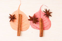 Star anise with cinnamon sticks Royalty Free Stock Photo