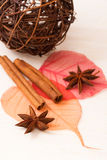 Star anise with cinnamon sticks Royalty Free Stock Image