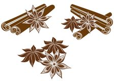 Star anise with Cinnamon sticks Stock Images