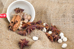 Star anise 'cinnamon sticks 'cardamon seeds Royalty Free Stock Photos