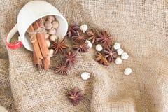 Star anise 'cinnamon sticks 'cardamon seeds Stock Photography