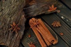 Star anise with cinnamon sticks. stock image