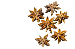 Star anise with cinnamon Stock Images