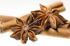 Star anise with cinnamon sticks Stock Photos