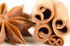Star anise and cinnamon Royalty Free Stock Photos
