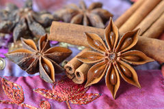 Star anise and cinnamon sticks. Over indian carpet Stock Photos