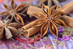 Star anise and cinnamon sticks. Over indian carpet Royalty Free Stock Photography
