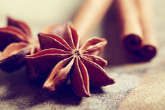 Star anise with cinnamon sticks Stock Image