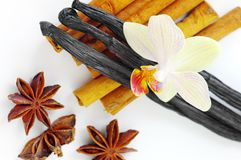 Star anise, cinnamon, vanilla Royalty Free Stock Photos