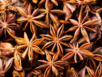 Star anise Royalty Free Stock Photo